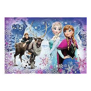 """Puzle """"Frozen"""" 160 gb"""