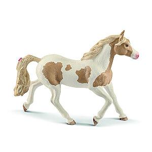 HORSE CLUB Paint šķirnes ķēve