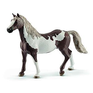 HORSE CLUB Paint šķirnes ērzelis