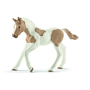 HORSE CLUB Paint šķirnes kumeliņš