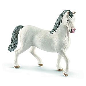 HORSE CLUB Lipizzaner šķirnes ērzelis