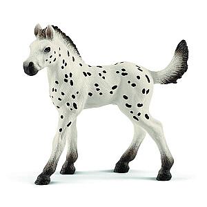HORSE CLUB Knabstrupper šķirnes kumeliņš