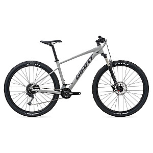 Mountain Bike Giant Talon 29 2-GE pelēks (2021.g.) Rāmja izmērs: L
