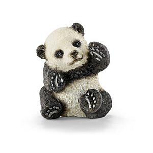 Pandas mazulis