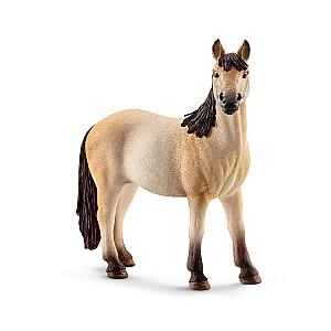 """""""Mustang"""" šķirnes ķēve"""