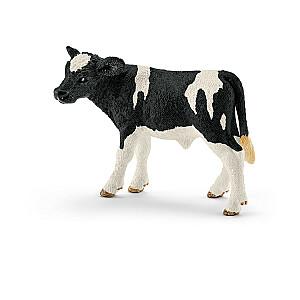 Holstein teļš