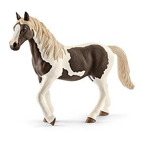 HORSE CLUB Pinto zirgs