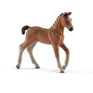 HORSE CLUB Hanoveras kumeļš